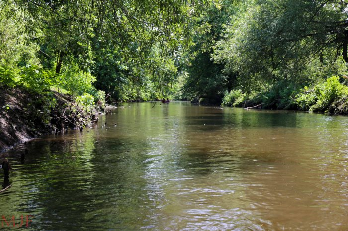Bronx River-132