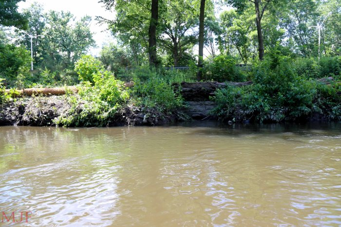 Bronx River-135