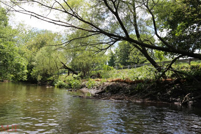Bronx River-143