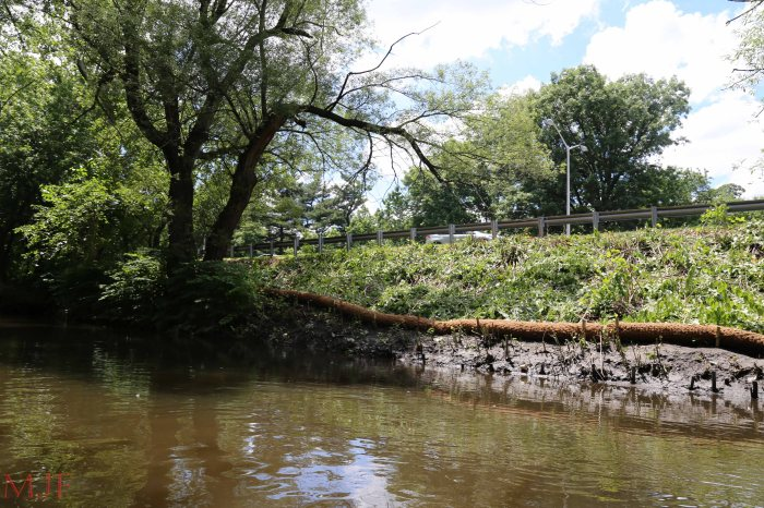 Bronx River-145