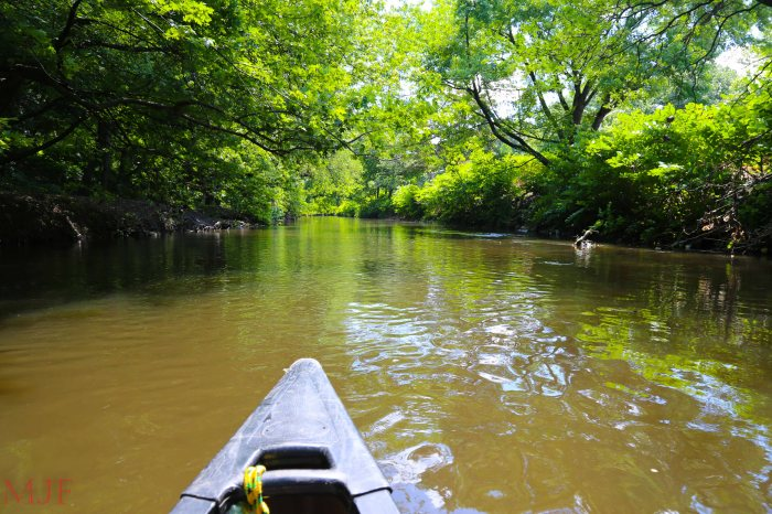 Bronx River-153