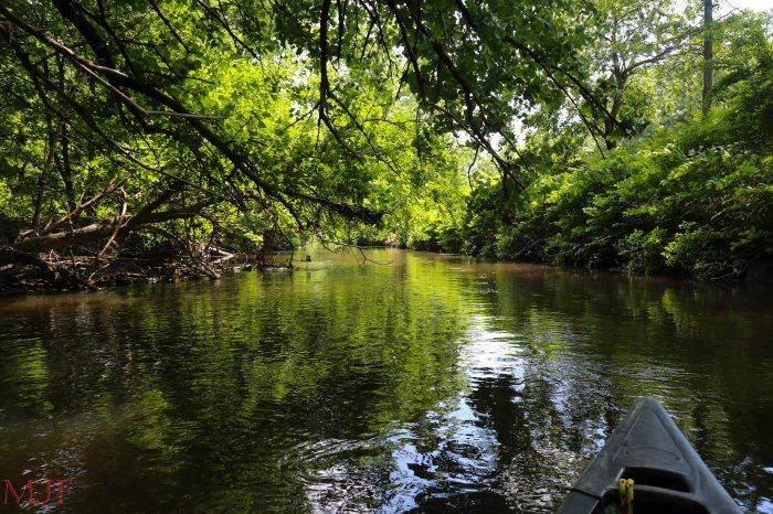 Bronx River-155