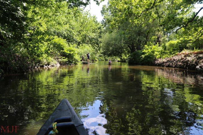 Bronx River-157