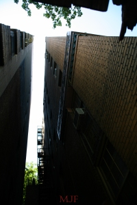Bronx Deco-80