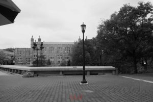 BX Photo Walk-53