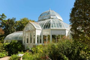 The Frick Greenhouse.  The man had serious taste, just not the nicest guy when it came to treating his workers right...