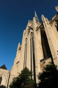 The great Carnegie Cathedral of Learning