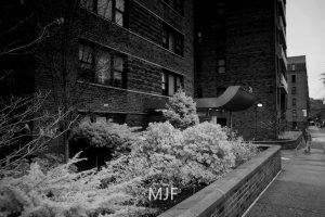 IMG_0218-Edit