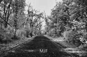 IMG_0373 -1-Edit