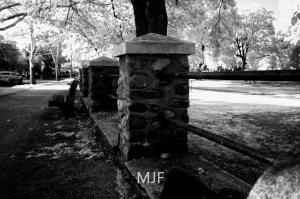 IMG_0396 -1-Edit-Edit