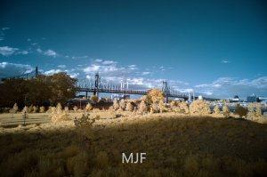 IMG_0525 -1 - Copy