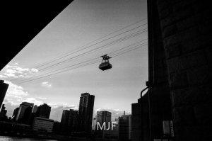 IMG_0533 -1-Edit