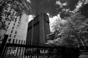 IMG_9056 -1-Edit