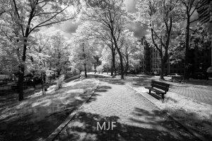 IMG_9065 -1-Edit