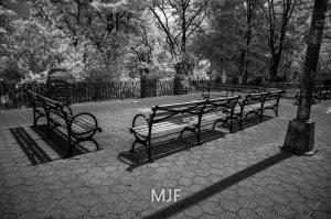 IMG_9068 -1-Edit-2