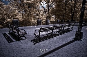IMG_9068 -1-Edit