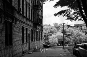 IMG_9071 -1-Edit-Edit