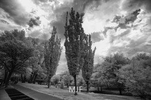 IMG_9073 -1-Edit-2