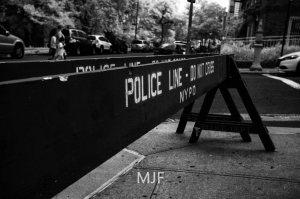 IMG_9076 -1-Edit